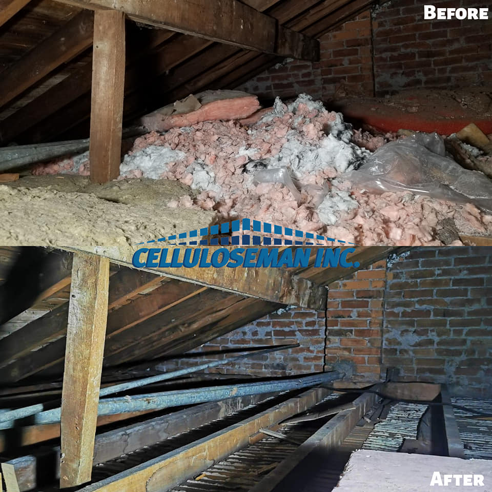 attic insulation removal 1