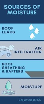 prevent mold in attic